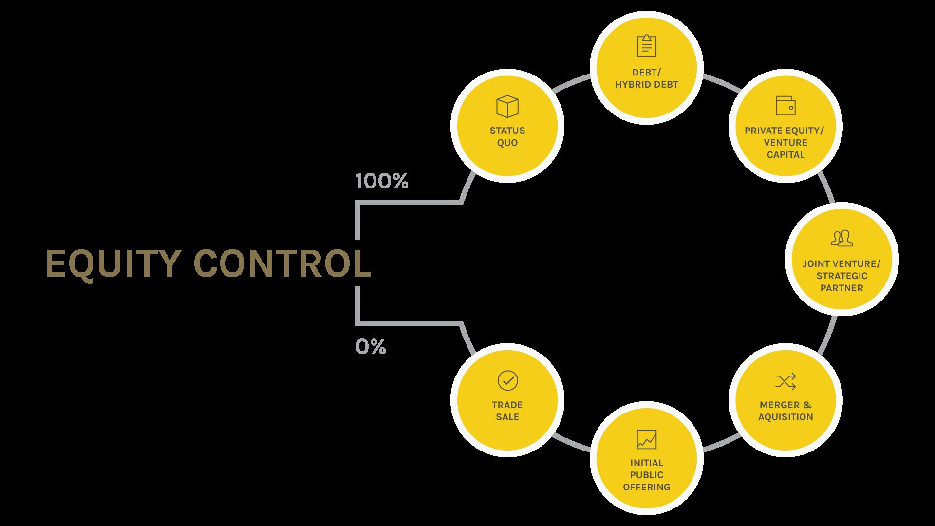 Capital Strategy Chart
